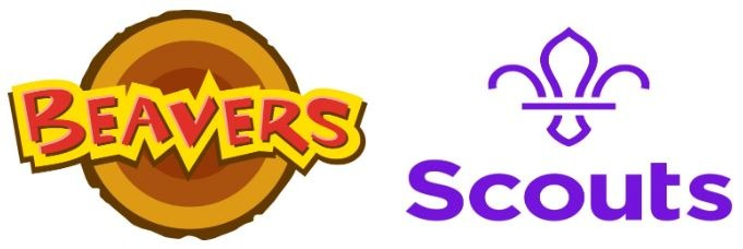 Leaders wanted for local Beavers and Scouts
